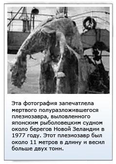 Плезиозавр (1977г.)