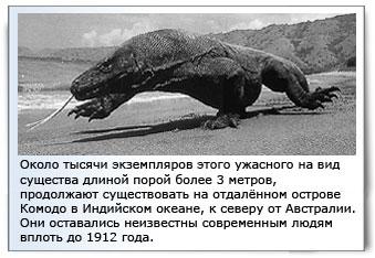 Динозавры сегодня